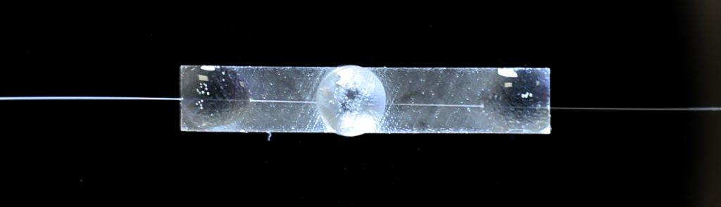 Fiber optic gyro polarizer